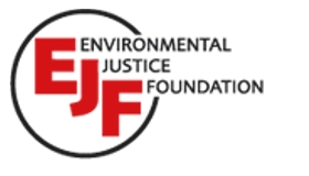 Coalition member guest post: Environmental Justice Foundation