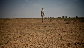 Podcast: migration and climate change – evidence for policy